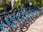 bike rentals on site