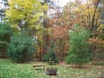 Partial view of the back yard with fire ring & beautiful autumn leaves