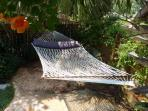 Private Hammock under the palms!