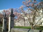 Cardiff University -15 minute walk
