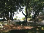 yard hammock