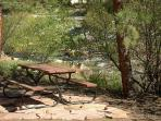 Private picnic area by river