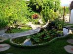 Front yard water gardens