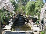 POND AND WATER FALLS