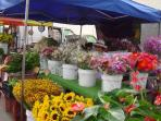 Visit one of the many local farmers markets.  Los Osos   every Monday from 2-4:30