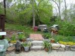 Backyard behind patio.