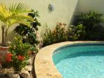 pool with tropical plants