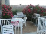 Grill your lunch in BBQ area and have your lunch or dinner ocean side