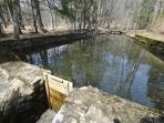 This property is right near a creek and has a weighing pool on the side of it!