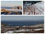 Winter is magical at Grates Cove knowing you have a cozy room and wood stove at Harbour House.