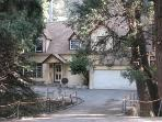 Granny Gert's Cabin in Springtime