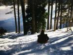 Lakeside Downhill Sledding- What was she thinking ??