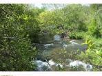 Part of the breathtaking stroll along Sulfur Creek