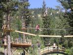 Adventure Park and Alpine Slides....short walk!