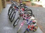 Bikes  for everyone