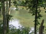 clean river