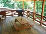 Deck With Grill And Ceiling Fan