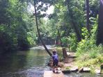 Exploring Dry Run Creek 15 minute drive from cabin