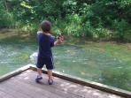 Trout fishing at Dry Run Creek