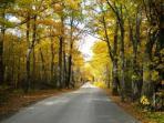 Enjoy the Fall in Door County