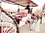 Romantic carriage rides