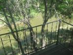 Balcony overlooking creek