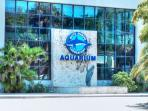 Mote Aquarium attraction, Sarasota