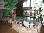 Spectacular heated, odorless, saltwater pool & hot tub; colored lites 4 nitetime