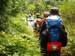 Hiking Through the Everglades