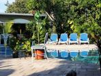 Chaise lounges tanning all day set in a completely private tropical Oasis..