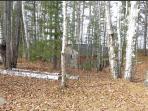Separate sauna