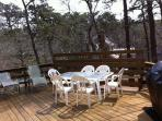 Large deck with propane grille, plenty of room for relaxing in sun or shade