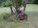 Agricultural relic, vintage mowing machine anchored firmly by a walnut tree
