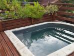 F2 hibiscus piscine