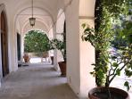 entrance patio with lemon trees