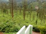 Imperial Heights is traditionally built independent cottage surrounded by natural forest, mountains