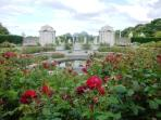 War Memorial Gardens in summertime - lovely place to relax when the roses bloom 6 months of the year