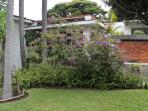 Jardín de Villa Xochimilco/ Villa Xochimilco´s garden