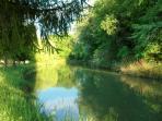 L'étang qui longe la propriété