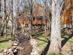 Creekside at Timber Wolf