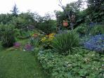 Garden area view