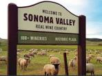 Sonoma Valley is the TOP wine destination in the US.