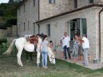 Horse riding is local and you can ride down to the house from the stables (half way prosecco!)