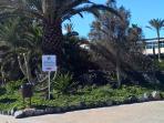 Atlantico Garden