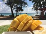 SURIN BEACH My photo I share a mango at BIKINI bar