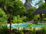 garden and pool. behind house simba