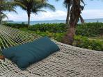 Sea Grape Villa - 3 bd Beachfront Villa