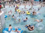 Wave Pool at JELLYSTONE .