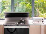 gas and induction cooker