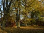 Die 'Alte Ziegelei' im Herbst